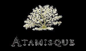 Aatmisque IA