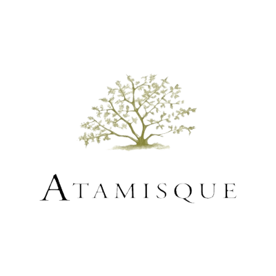 Aatmisque Black Removed
